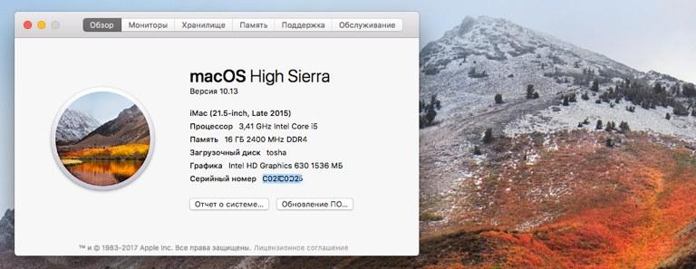 macOS 10.13 на хакинтоше